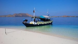 one day komodo island tour